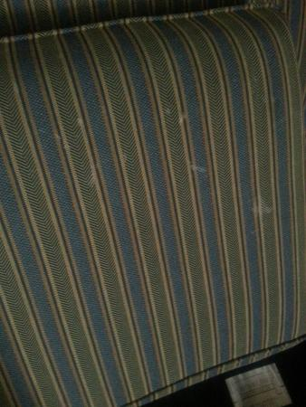 DoubleTree Suites by Hilton Hotel Lexington: Stains on couch cushions