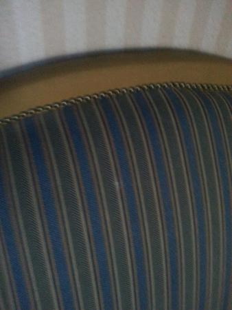 DoubleTree Suites by Hilton Hotel Lexington: Stains on back of couch