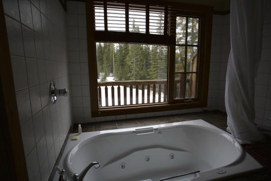 Winston Lodge & Spa: Bathroom with a view