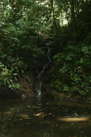 Finca Valmy Tours: waterfall