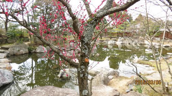 Matsuyama Castle Ninomaru Historical Garden: 林泉庭景観