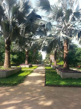 Jardin Botanico Culiacan