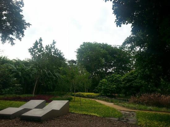jard n bot nico culiac n picture of jardin botanico