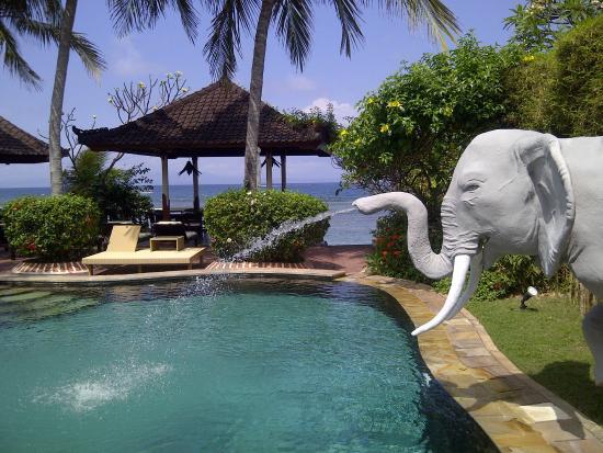 Pondok Bambu : Heerlijk zwembad