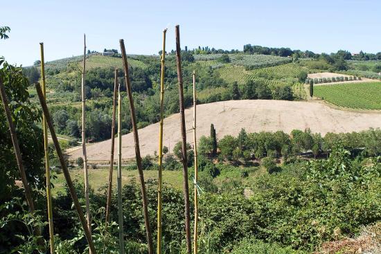 أجريتوريزمو بييترافيتا: The view to the local fields and farms