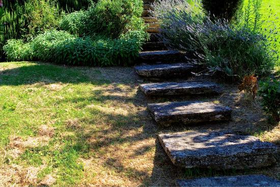 أجريتوريزمو بييترافيتا: Stone steps in the garden of Pietrafitta