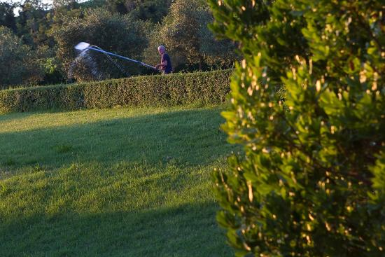 Pietrafitta Podere La Costa: The garden outside the hotel