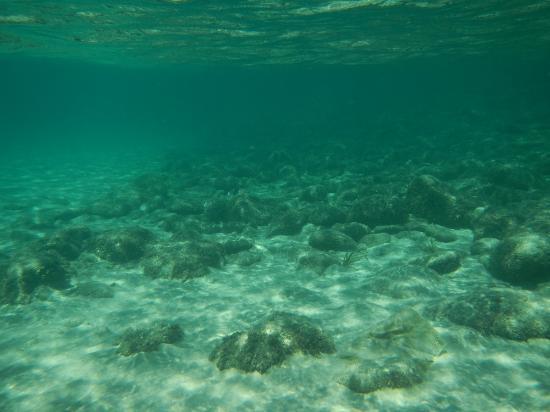 Megali Ammos : 透明な海
