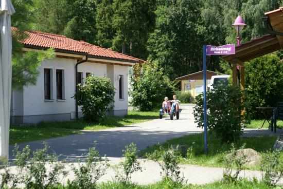 Trixi Ferienpark Zittauer Gebirge: Außenansicht Ferienhäuser