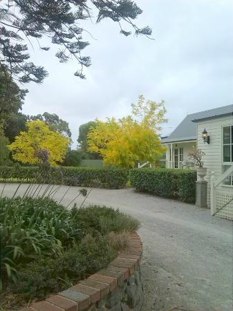 Glen Isla House: ein kleiner Teil des Gartens mit altem Baumbestand, herrlichen Rosen. Agapanthus....
