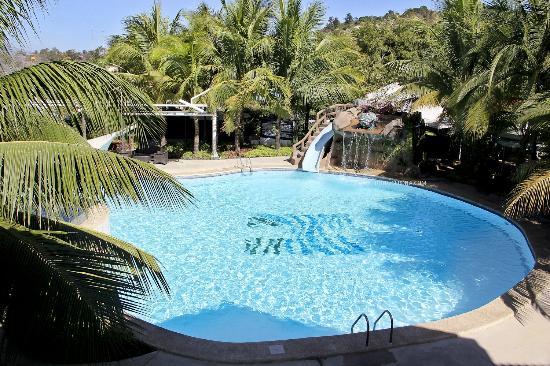 Moonbay Marina Leisure Resort: Pool Area