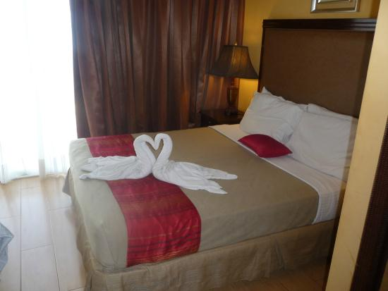 Danao Coco Palms Resort : Swans were a nice touch on arrival
