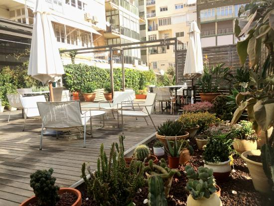 Ca La Maria: Use the rooftop garden as your office!