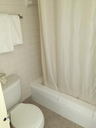 Econo Lodge North : Clean bathroom