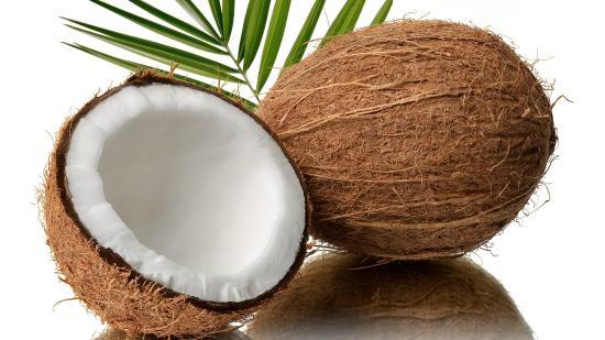 Coconuts atUnder Wraps Cafe Juice Bar & Health Store , Port Douglas