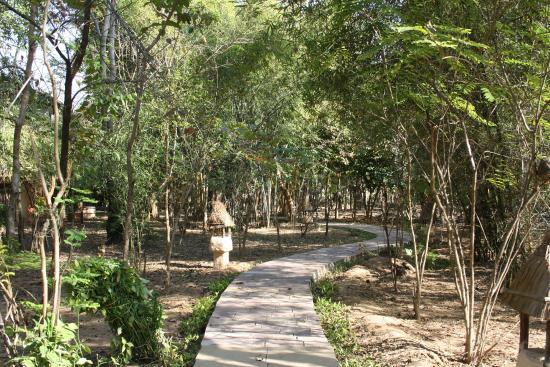 Tuli Tiger Resort: Wege durch die Anlage