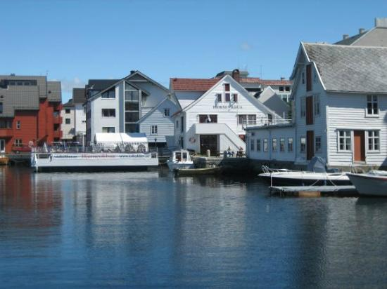 Flora Municipality, Norveç: City from the harbour