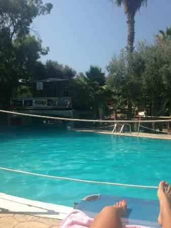 River Reggae Apartments: pool area