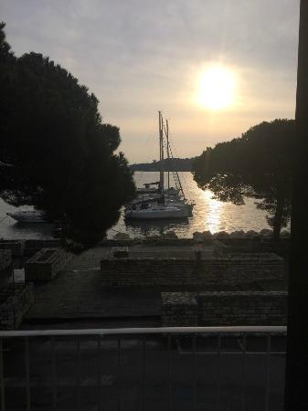 Locanda La Lucciola : La vista dalla camera alla mattina!