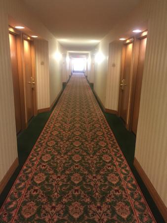 Phoenix Airport Marriott: Grandma wants her carpet back