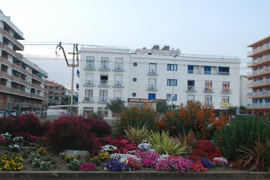 Sorrabona Hotel: Вид на отель с пляжа