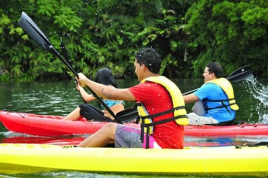 Foto de melia panama canal colon bohio de la piscina for Piscina canoe