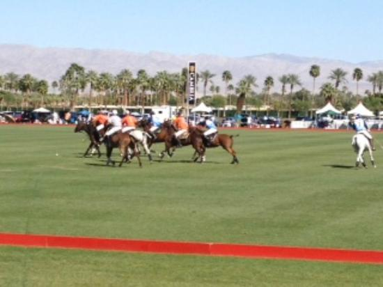 Empire Polo Club: the beautiful ponies during the 3rd Chukker