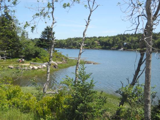 Hermit Island: View from the hiking trails..
