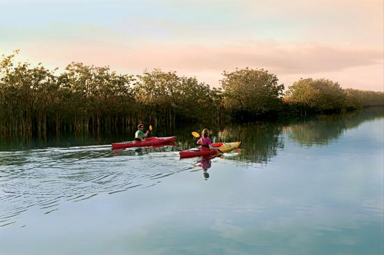 Santa Maria Harbour Resort: Everglades Kayak