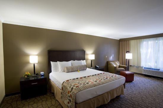 Airtel Plaza Hotel : Preferred King