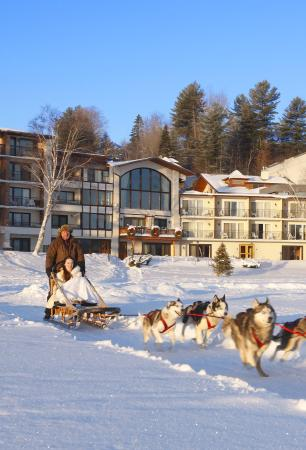 Golden Arrow Lakeside Resort: Dogsled Rides on property