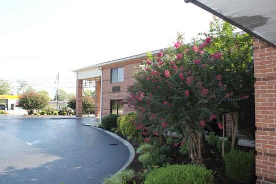 Best Western Celebration Inn & Suites: Exterior From Entrance