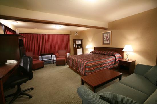 Sandman Hotel Castlegar: Guest Room - 1 King