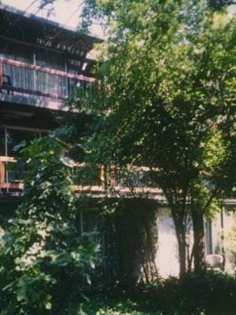 Hotel Acacias De Vitacura: View