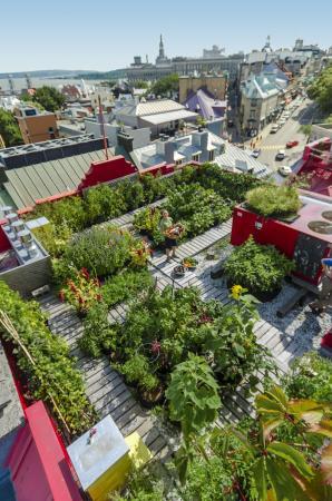 Hotel du Vieux-Quebec: Rootop garden HVQ