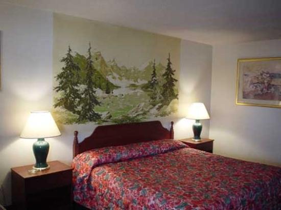 Lodi El Rancho Motel: View
