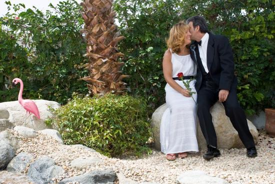 Palm Springs Rendezvous: Romantic Wedding