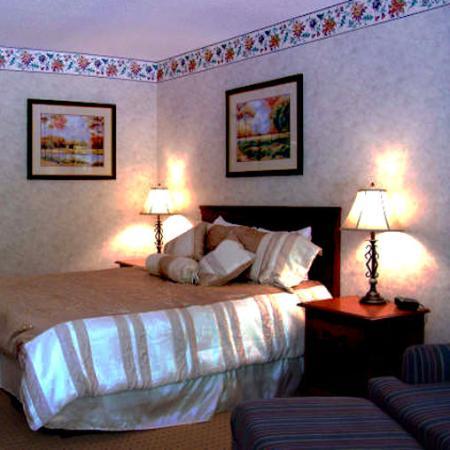 Durham Skyland Magnuson Hotel: Guest Room