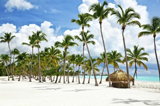 Punta Cana (125331466)