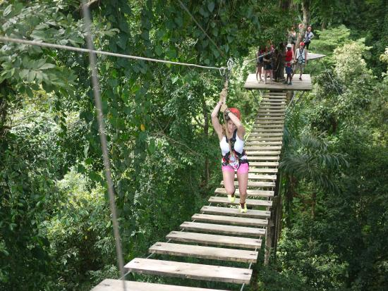 Bastimentos Sky Zipline Canopy Tour: Optional bridge