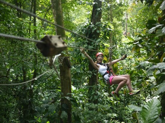 Bastimentos Sky Zipline Canopy Tour: self explanatory