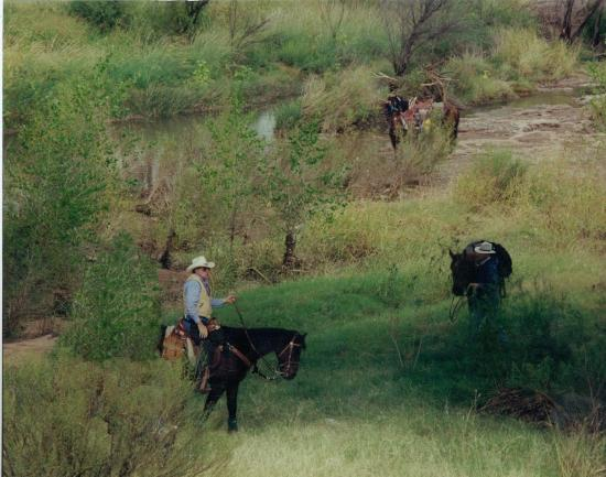 Days Inn Sierra Vista: Horseback Riding