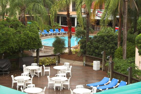 Baymont inn suites tampa near busch gardens updated Restaurants near busch gardens tampa