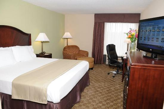 Holiday Inn Express Peachtree Corners/Norcross: King