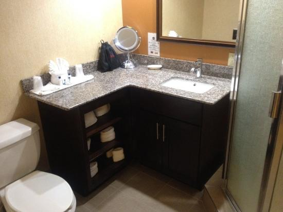 BEST WESTERN Suites Near Opryland : Bathroom