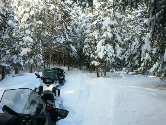 Cozy Moose Lakeside Cabin Rentals: snow mobiling