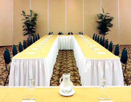 BEST WESTERN PLUS Gatineau-Ottawa: Meeting Room