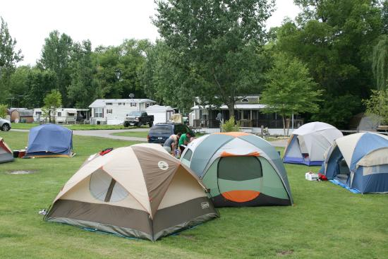 Lakeland Camping Resort: Campsite