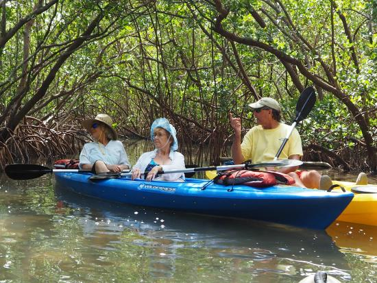 Bay & Gulf Adventures: Discussing the history of the mangrove tunnels.