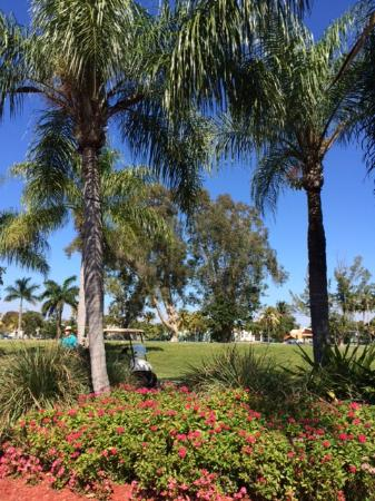 Hollywood Beach Golf Resort: FORE!